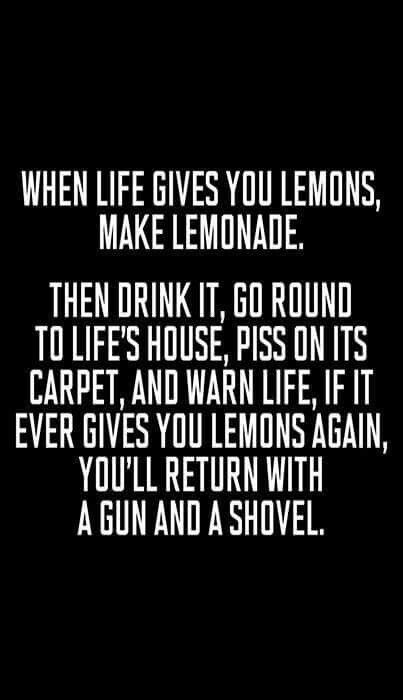 When Life Gives You Lemons Funny Stuff I Like Quotes Funny