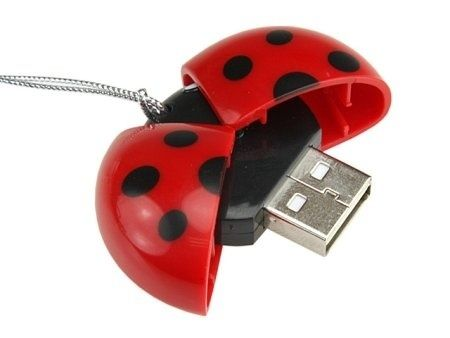 Lady Buggin' | 27 Reasons To Use Flash Drives From Pinterest