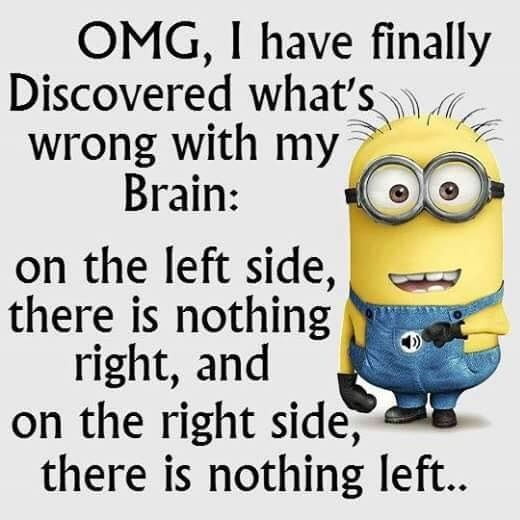 Image By Adidas Queen Pinterest Adidas Queen Minions Funny Funny Minion Quotes Minion Quotes