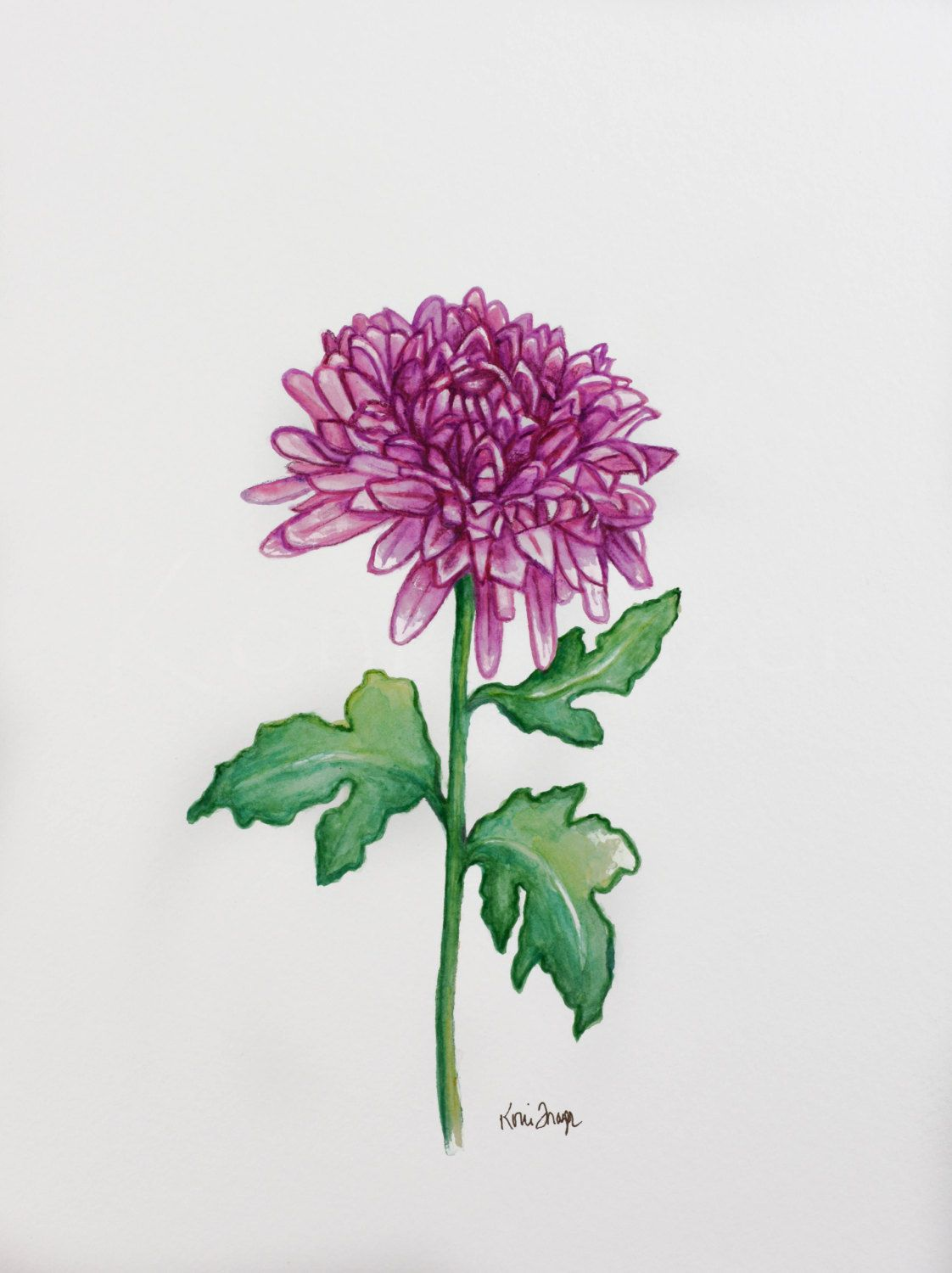 Chrysanthemum, November birthday flower, original