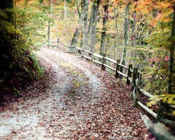 Autumn Photo, Autumn Landscape Photograph, Fall Photo, Autumn Canvas