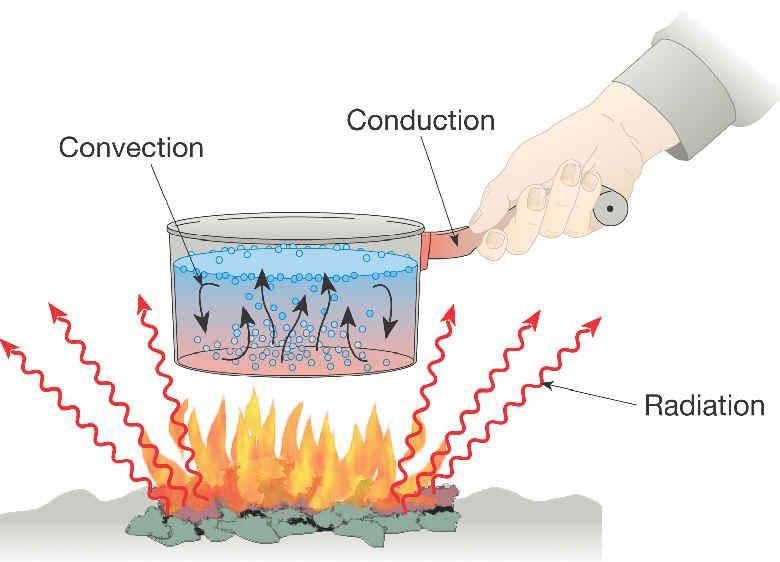 heat conduction survival - Google Search