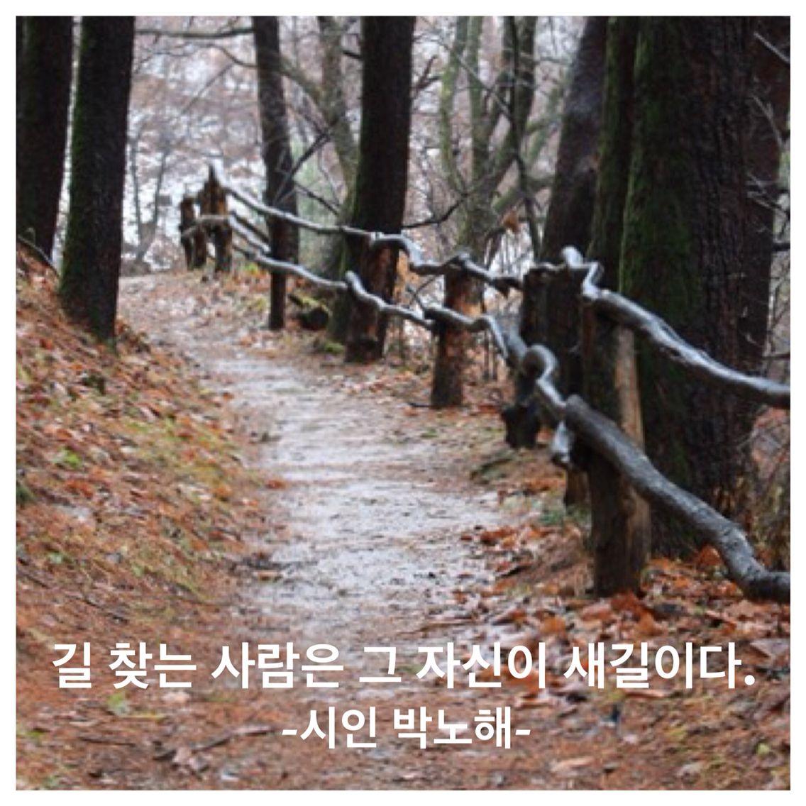 시인 박노해가 쓴 사람만이 희망이다에서 옮겨 왔습니다. 좋은 글입니다.