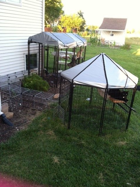 Dog Kennel From Menards Walkway Storage Wired Cubes From Target