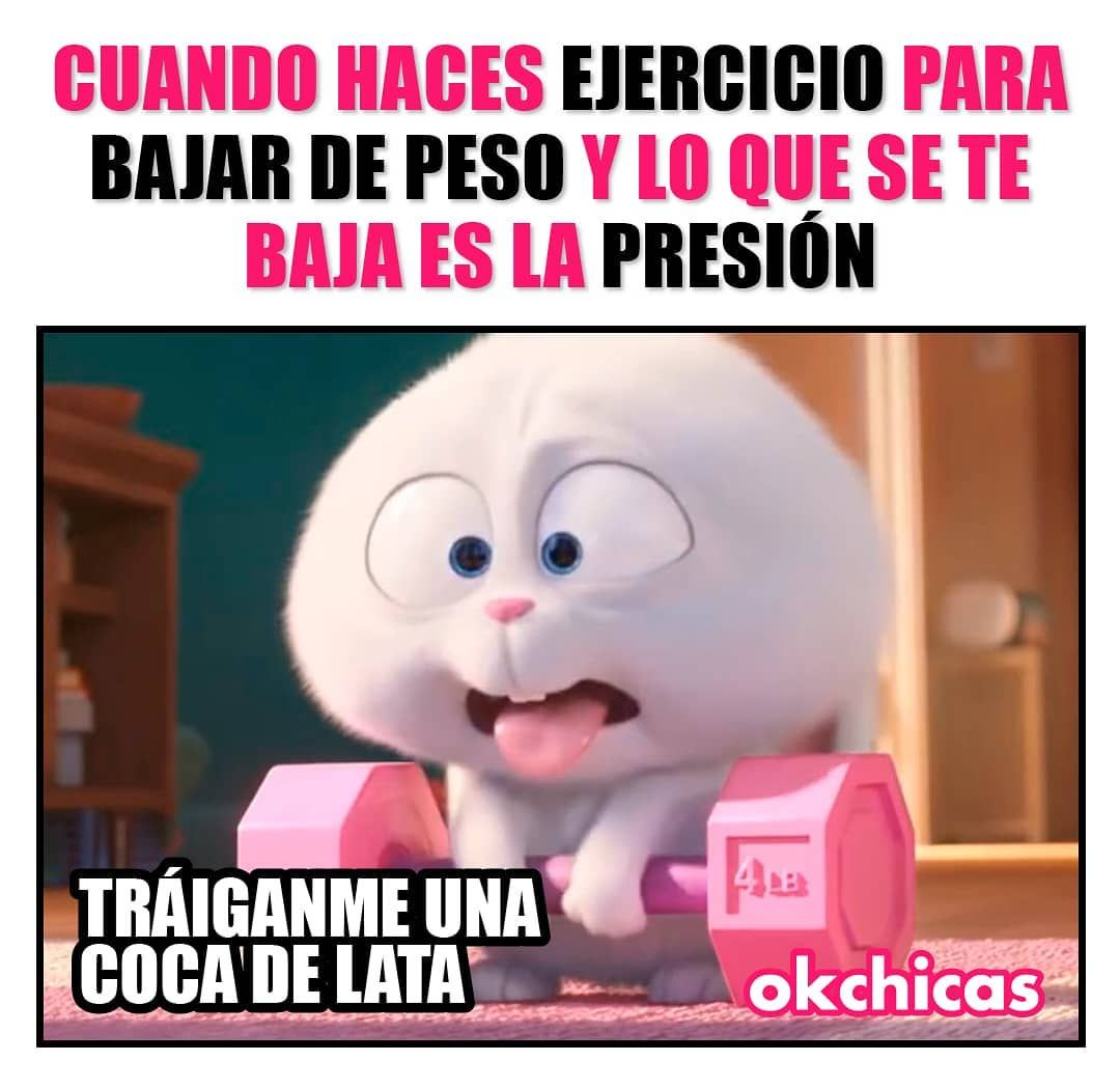 Okchicas On Instagram Una Coquita Y Una Torta In 2021 Instagram Memes Toy Chest