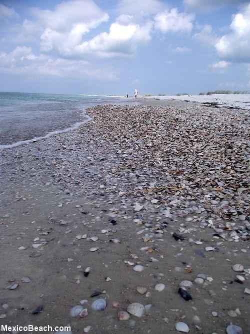 Mexico Beach Florida Photo Al Crooked Island Photos