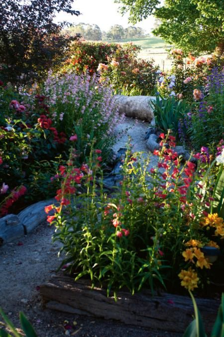 Australian Rose Garden: Inside Frosty Flats In The