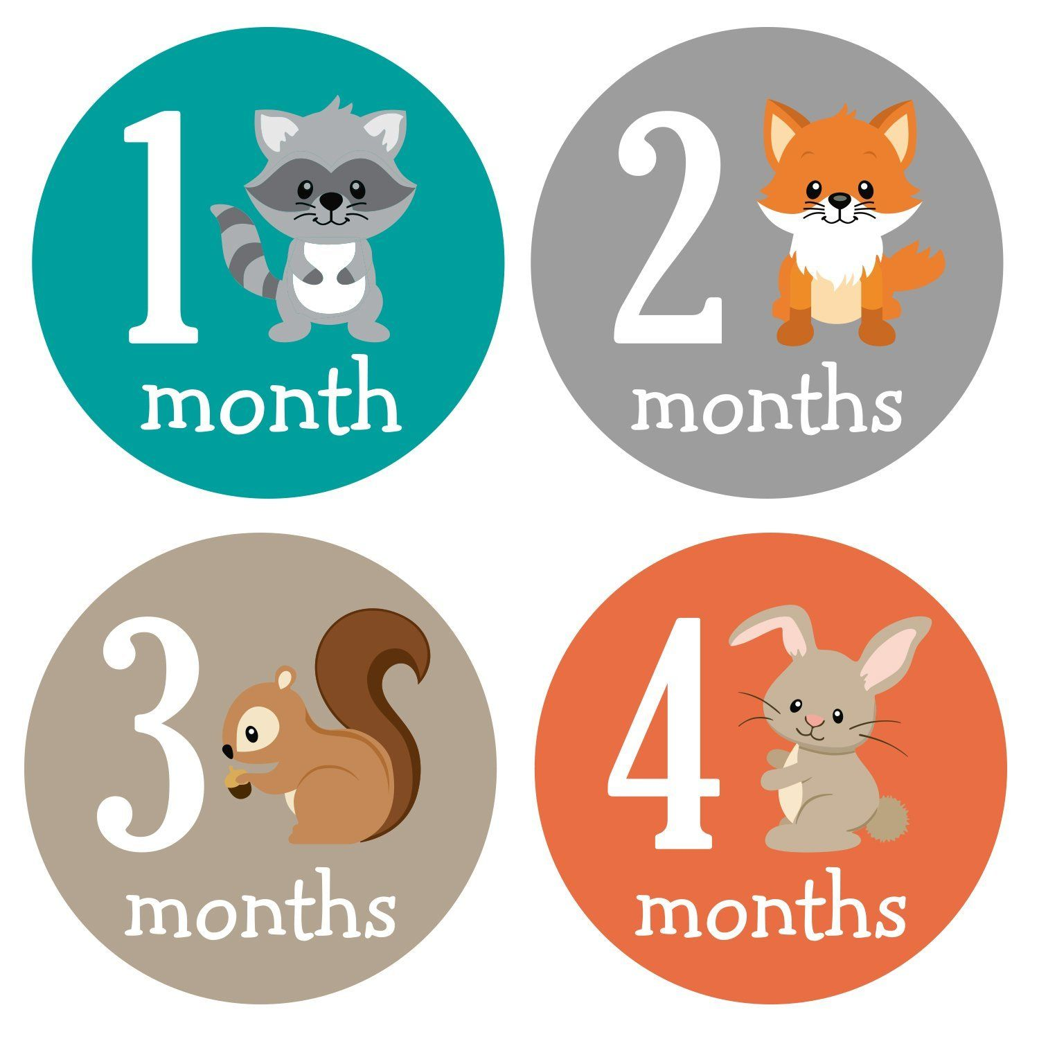 Pinkie penguin woodland animals baby monthly stickers milestone pinkie penguin woodland animals baby monthly stickers milestone onesie stickers baby boy 1 12 months baby shower gift amazon office products negle Image collections