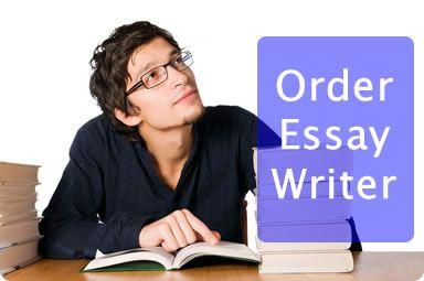 essay writing service usa