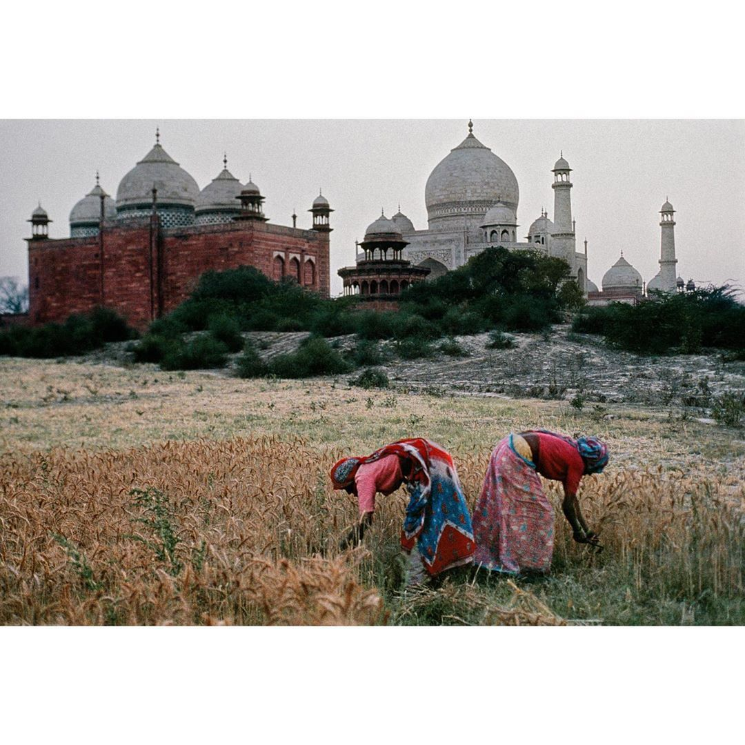 Steve Mccurry On Instagram Two Women Working In A Field In Front Of The Tajmahal Agra India 1996 I Recently Revisited The Site And Discover That They A