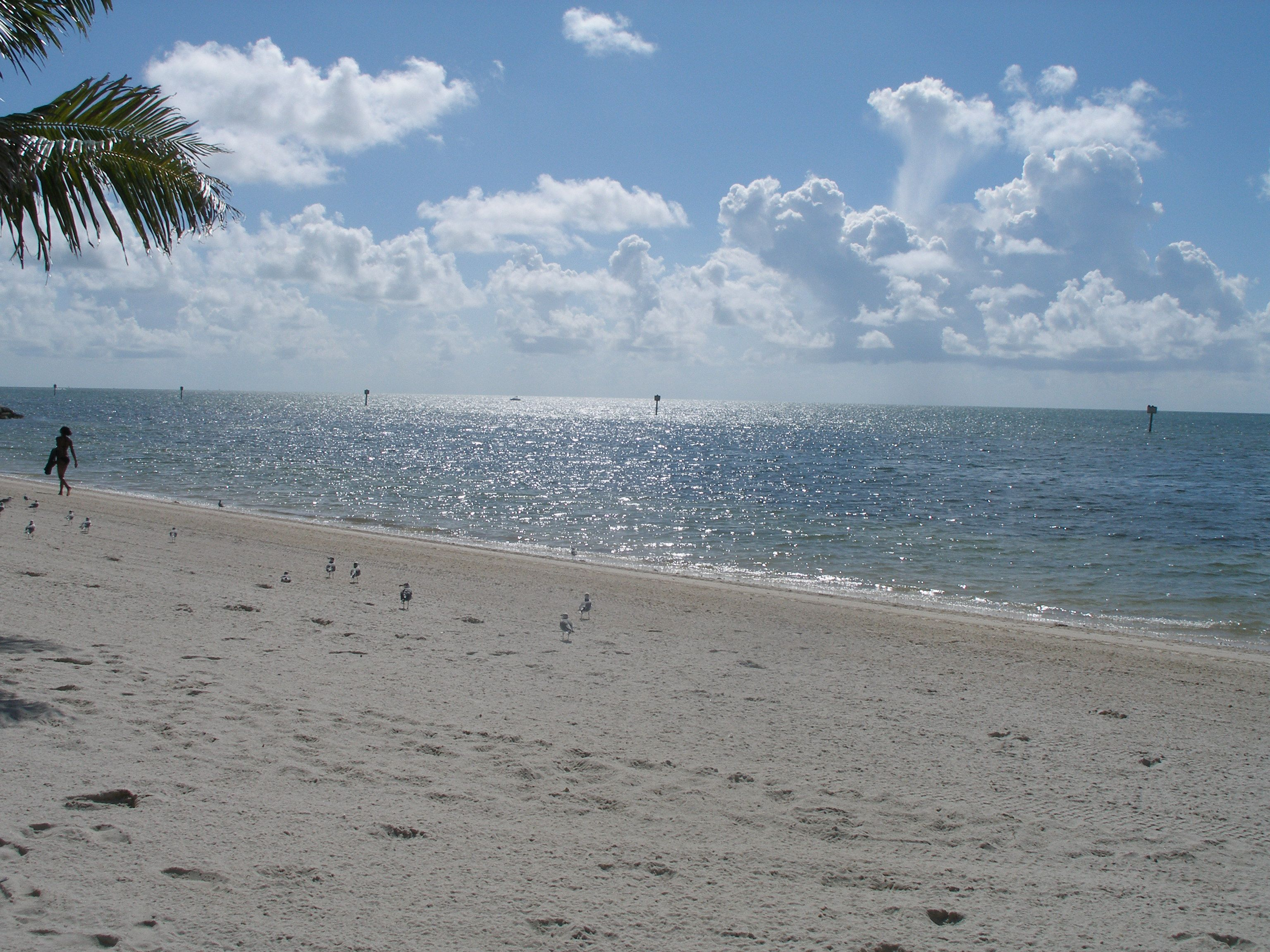 Key West is an outdoorsy kind of place. A Florida Keys Girl, gives advice on livin' it up in Key West rain or shine.