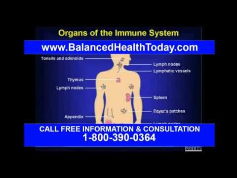 Gallbladder digestive enzymes what is gall bladder functions