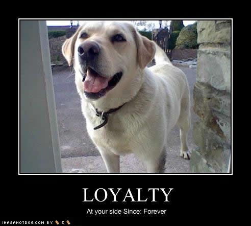 funny loyalty quotes