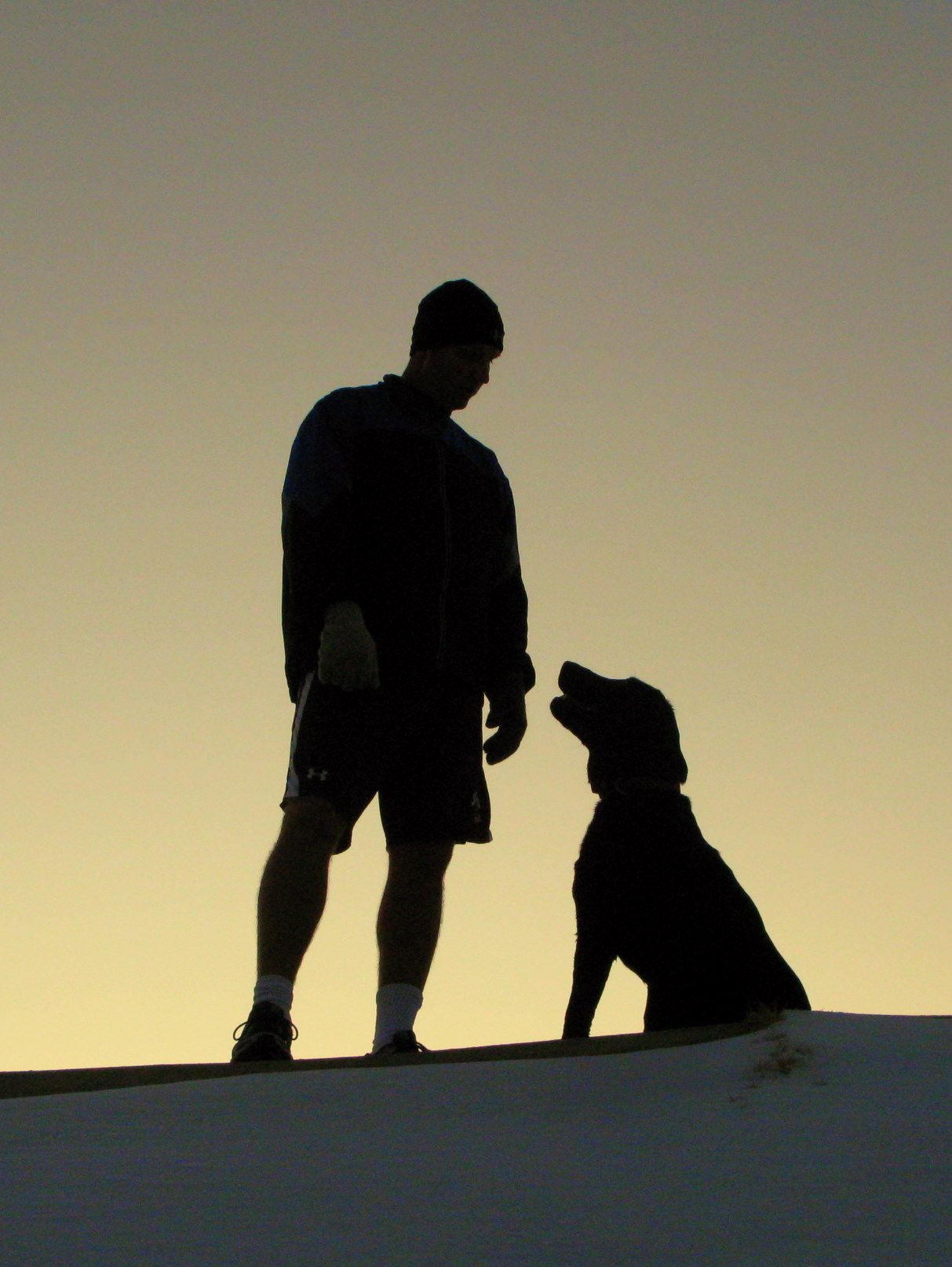 Mans Best Friend Loyalty Of A Dog In 2020 Man And Dog Drawings Of Friends Dog Silhouette