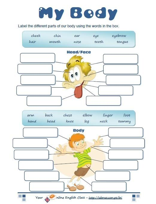 parts of body worksheet - Yahoo Image Search Results | English ...