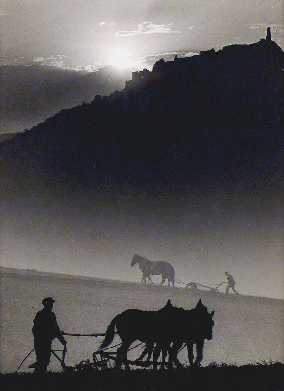 Jenő Dulovits  ::    Ploughing, 1935
