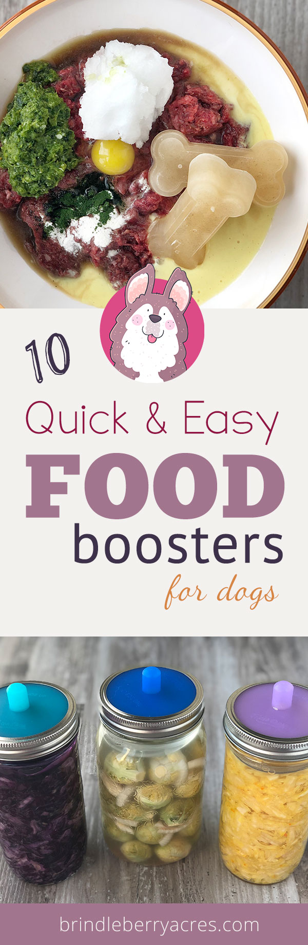 10 quick & easy food boosters you can add to your dog's