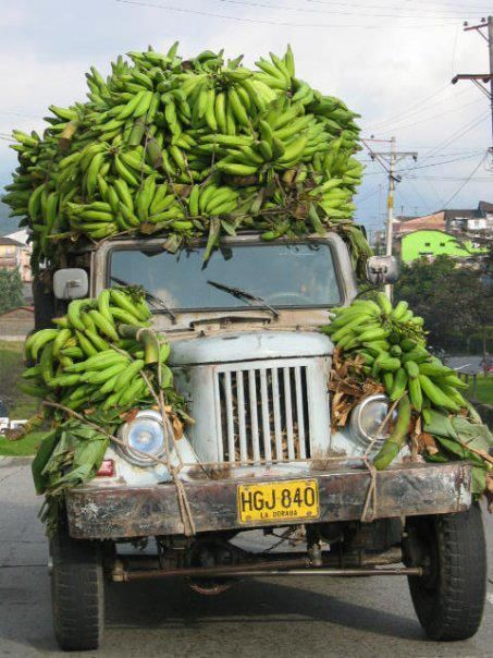 your driving me bananas!!!!