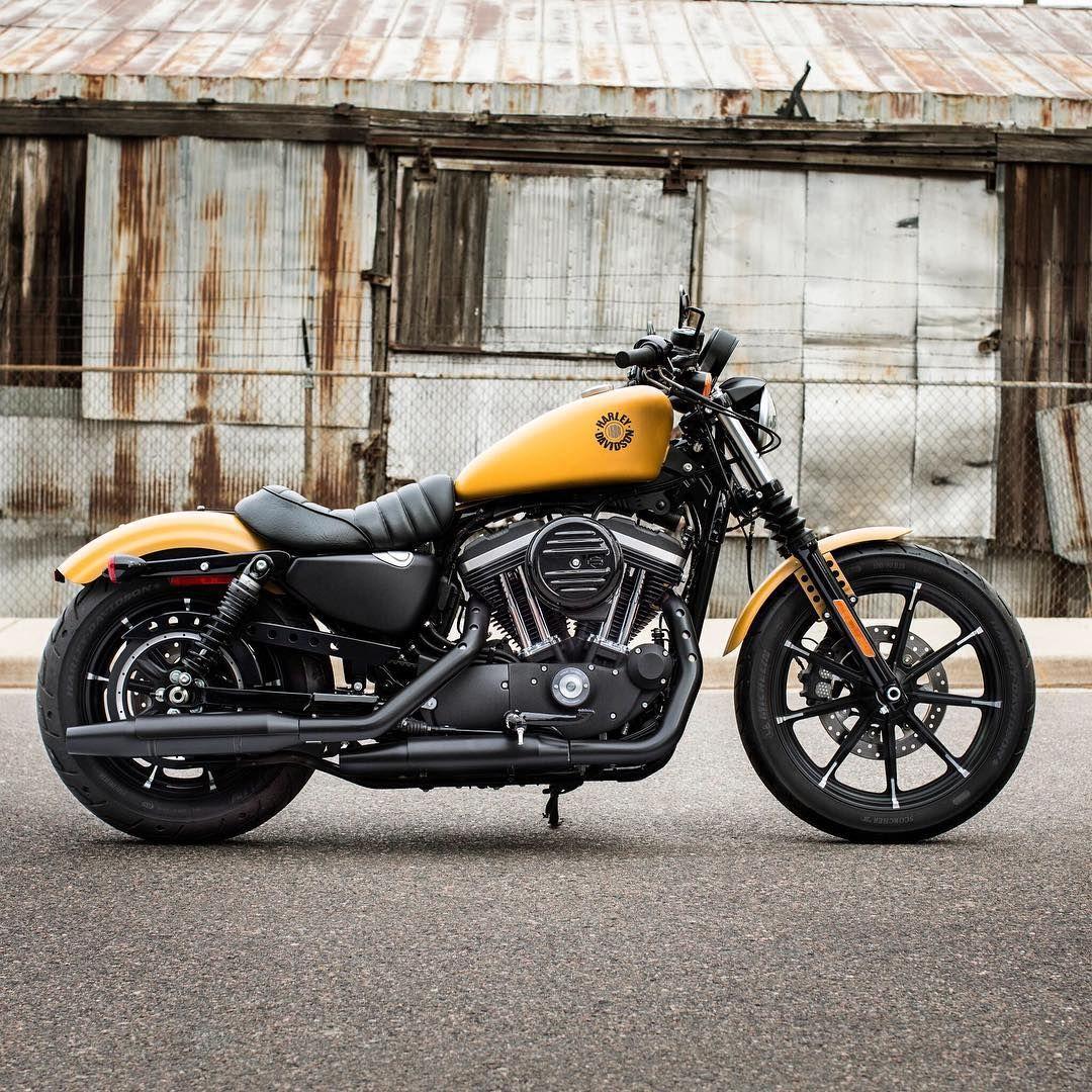 Harley Davidson On Instagram Everything You Need Nothing You Do
