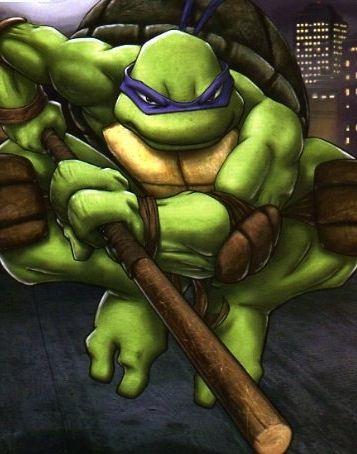 Which Teenage Mutant Ninja Turtles Character Are You Teenage Mutant Ninja Turtles Mutant Ninja Turtles Teenage Mutant Ninja
