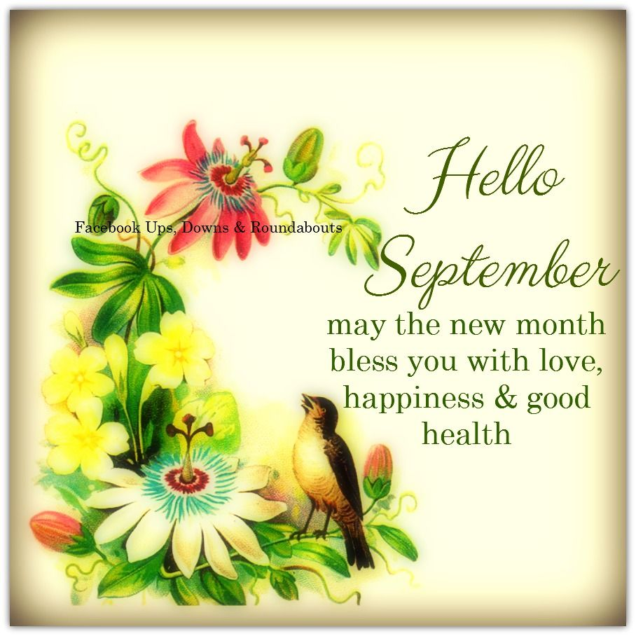 Hello September, may the new month bless you with love, happiness & good  health https:/… | Hello september images, Hello september quotes, Welcome  september images
