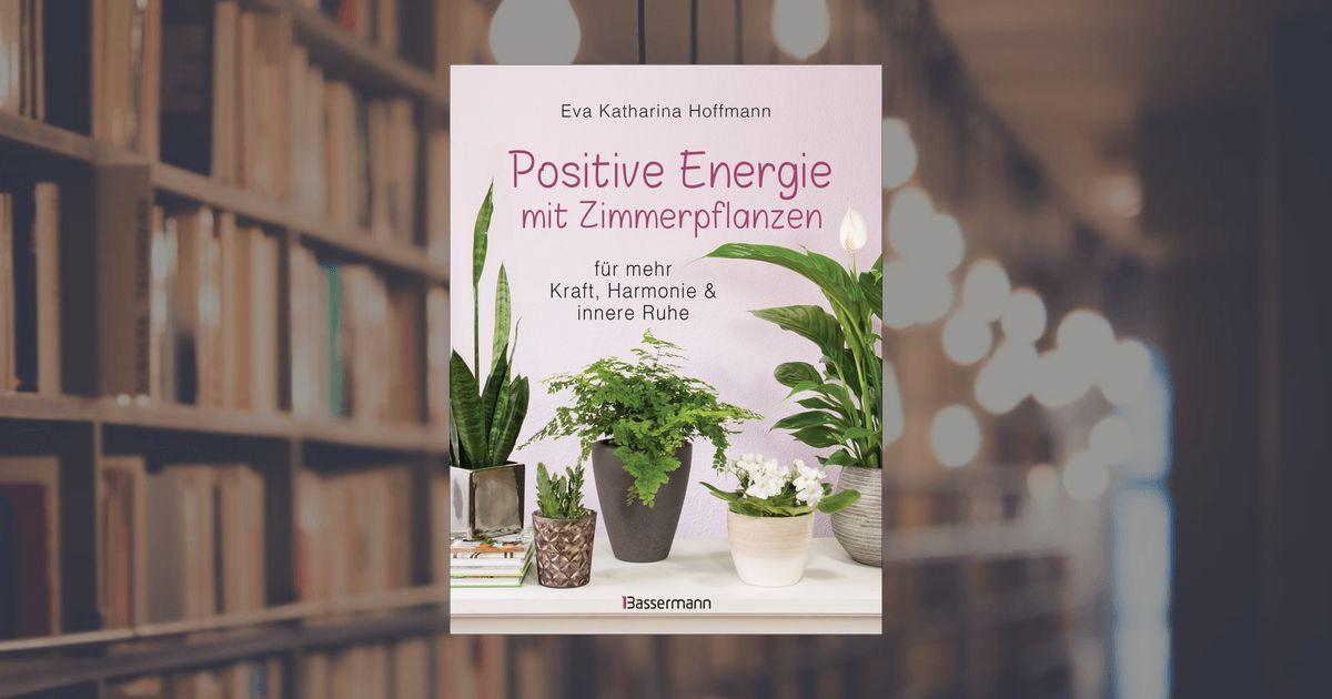 Grunlilie Schwertfarn Begonie Und Andere Zimmerpflanzen Bringen Positive Energie Ins Haus Denn Sie Besitzen Besonde Zimmerpflanzen Positive Energie Pflanzen