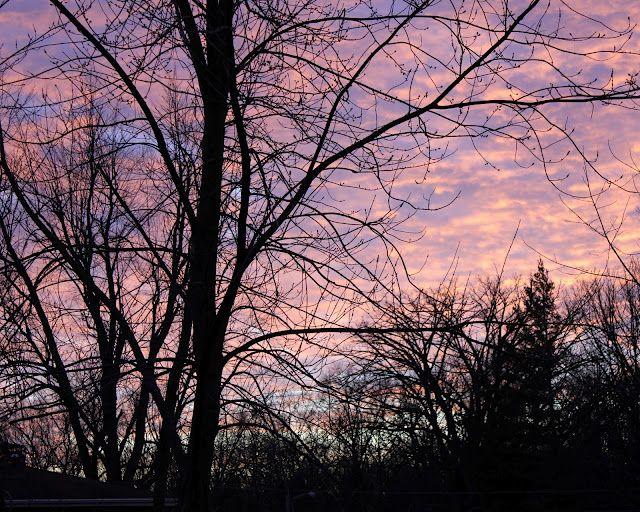 January Sunset, Central Illinois