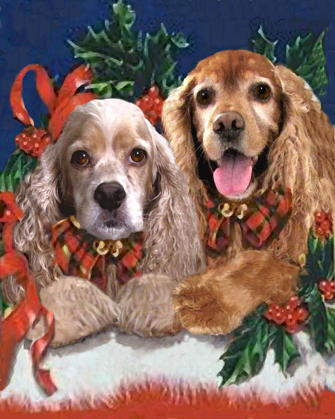 Christmas Cocker Spaniel Linda S Dd And Moxie Cocker Spaniel Cocker Spaniel Puppies Dog Paintings