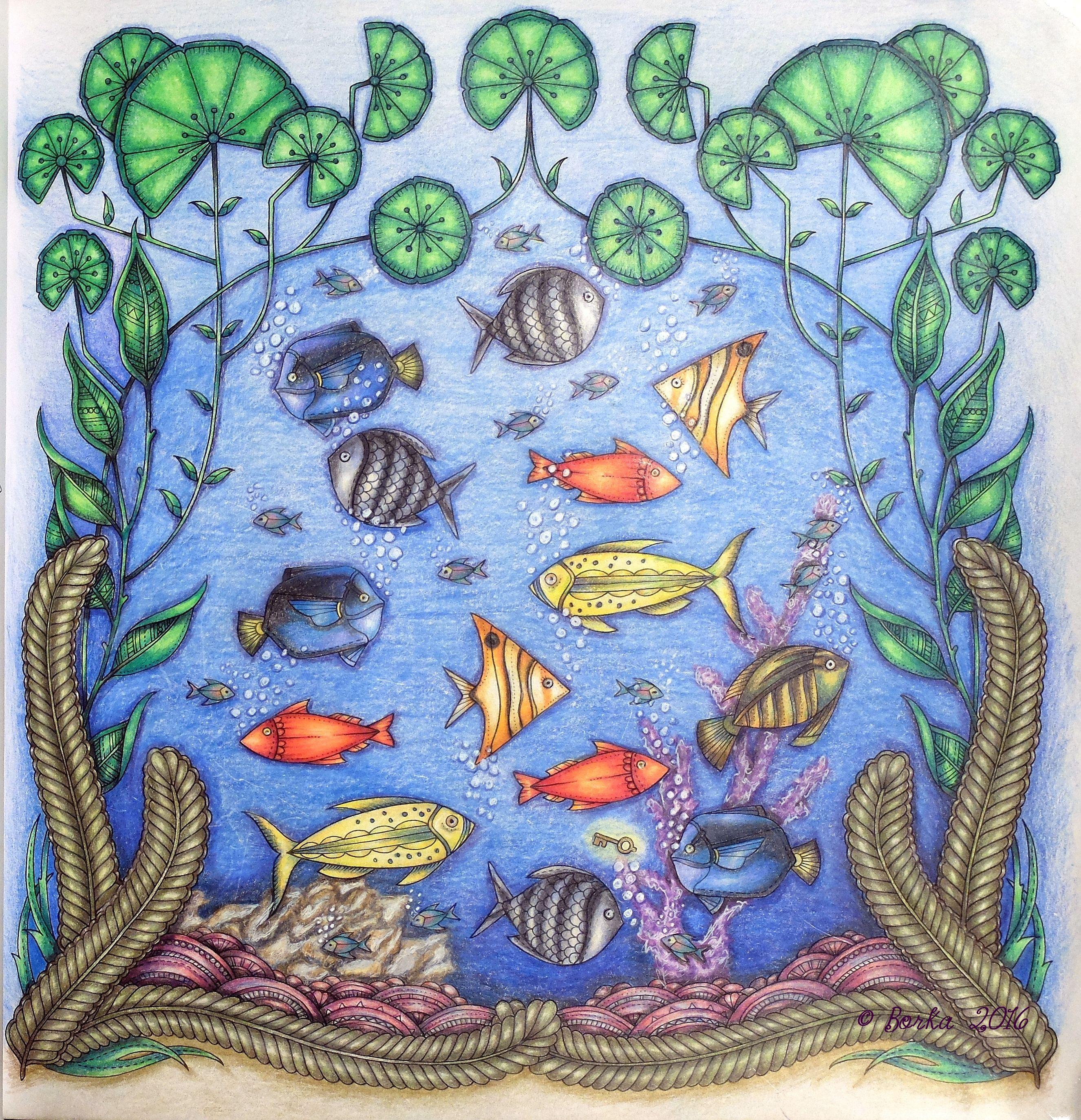Johannabasford Lostocean Fish Johanna Basford Coloring Pages