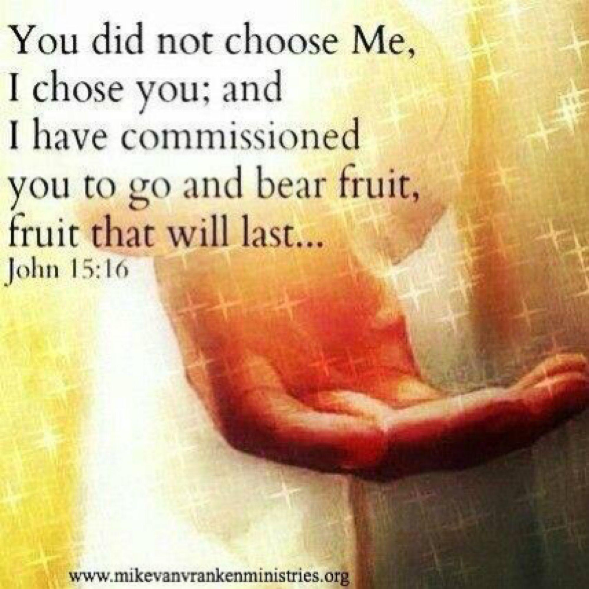 #chosen