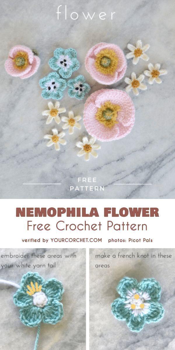 Modèle gratuit de fleur de nemophila au crochet   – Crochet Ideas