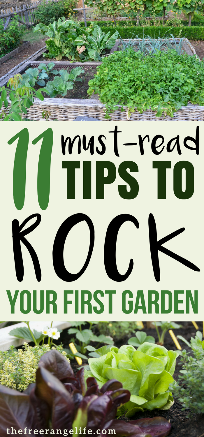 Merveilleux Are You A Vegetable Gardening Beginner? Read These Tips From A Pro That  Will Help You Plant Your Best Backyard Garden Ever!