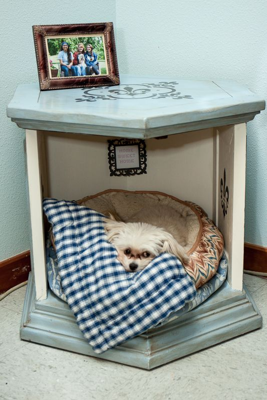 Dog House Made From End Table Purchased At Safehaven Gift Thrift