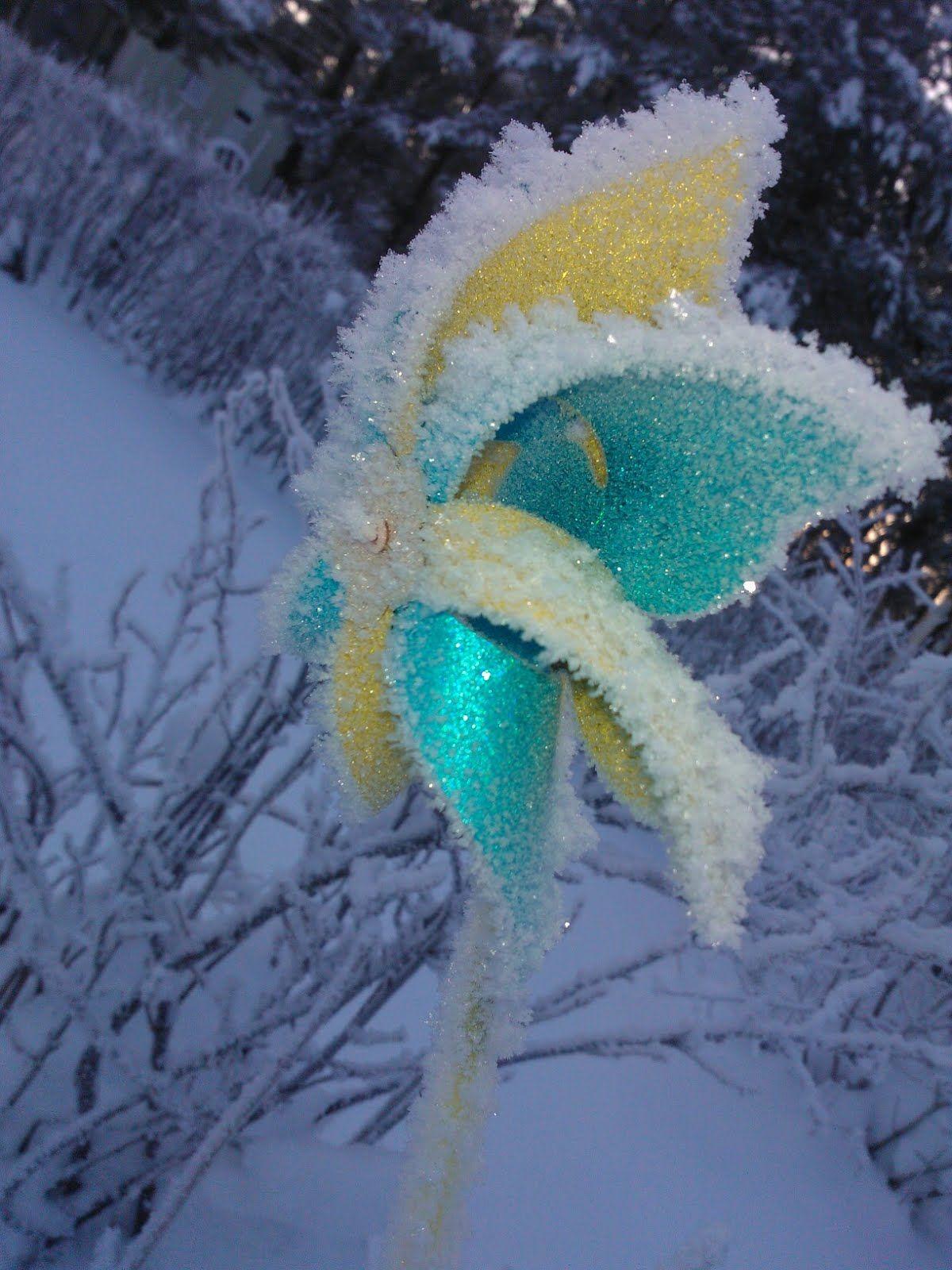 Talven tullen viipperökin jäätyy