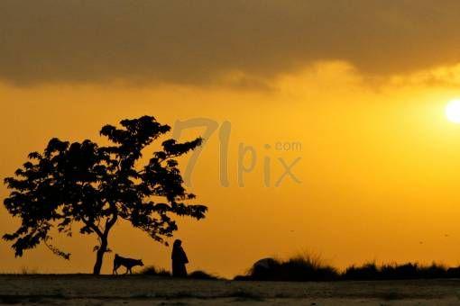 memories of last light. by enamureza on 71pix.com