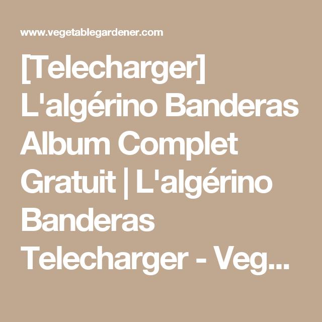 ALGERINO BANDERAS MUSIC TÉLÉCHARGER