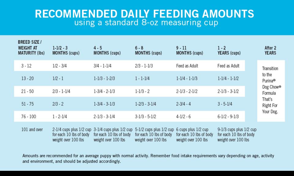 How Much To Feed A Puppy Labradorpuppyhowmuchtofeed Puppy Feeding Guide Puppy Feeding Schedule Puppy Training