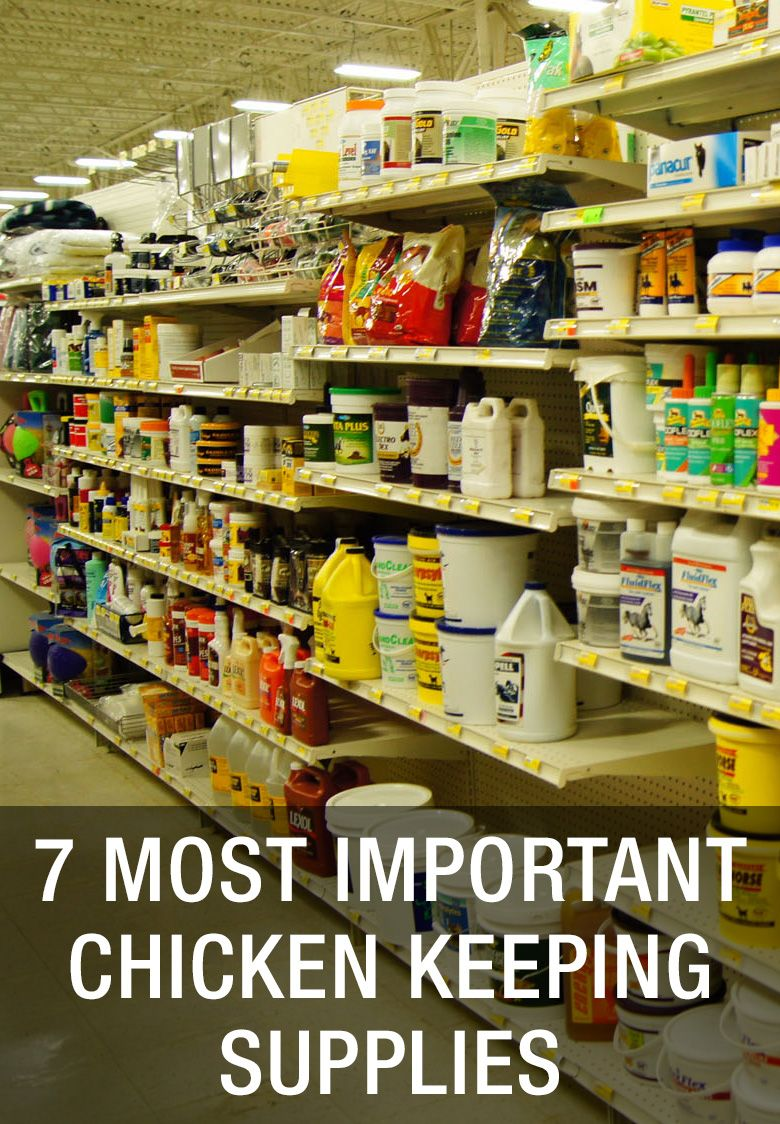 7 Most Important Chicken Keeping Supplies: http://www.mychickencoop ...