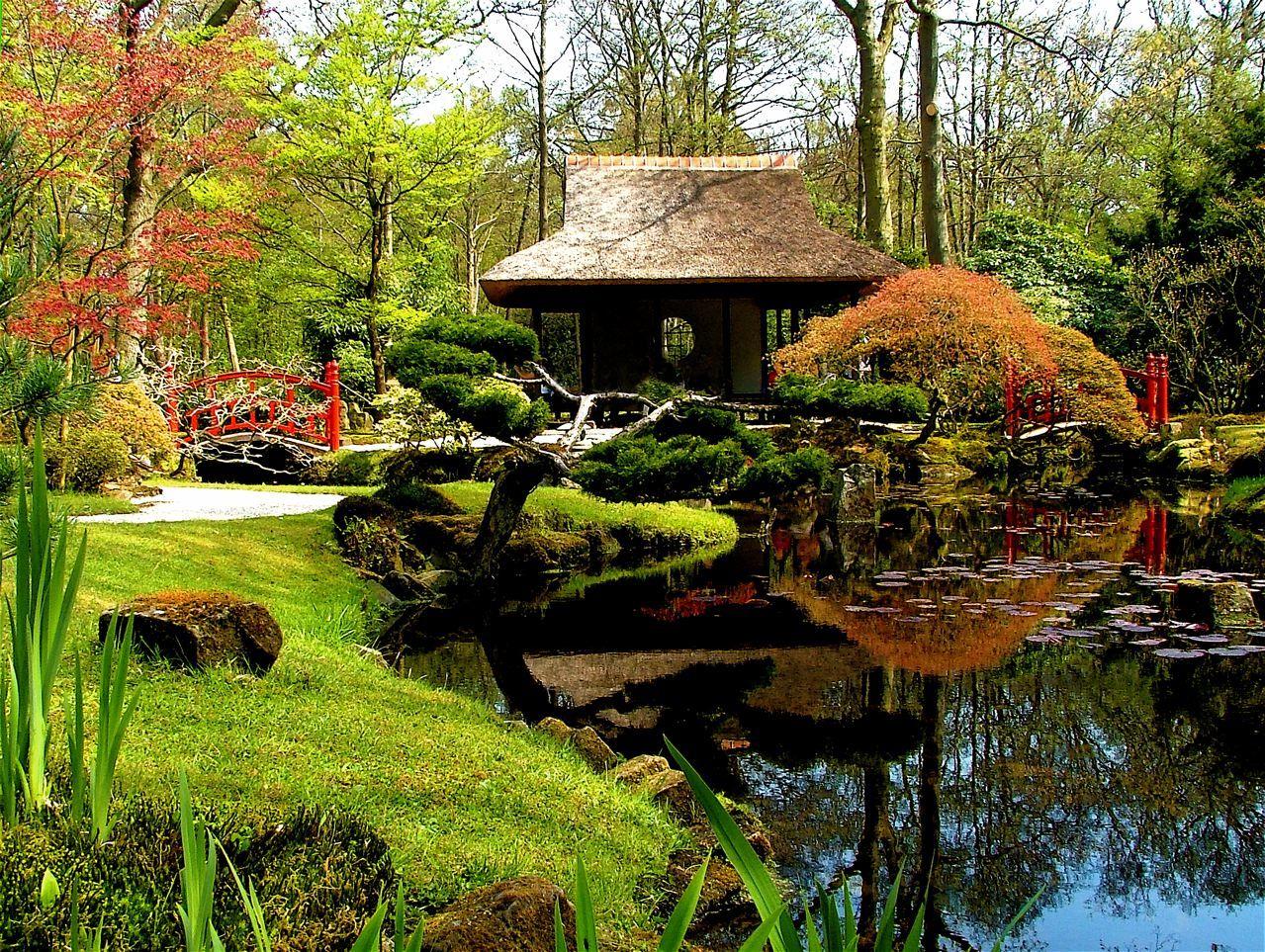astonishing beautiful zen garden | beautiful japanese garden | Zen garden design, Japanese ...