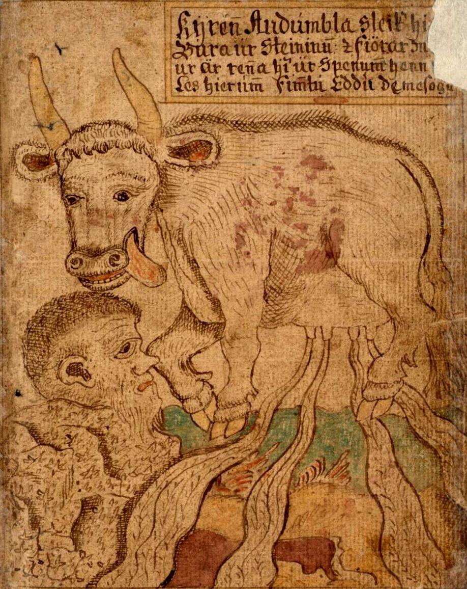 Det var her koen Audhumla og jætten Ymer levede, og det er her, at Odin og hans brødre Vile og Ve senere skaber verden af Ymers døde krop.  Audhumbla (eller Ødhumbla) er urkoen, det første væsen, der eksisterer i nordisk mytologi i skabelsesberetningen.  Jætten Ymer kommer til og lever af Audhumlas mælk.   Af jætten Ymer dannes hele vores verden senere – himmel og skyer, jord og klippe o.s.v..   Audhumla slikker salt af en sten og danner ud af stenen jætten Buri.  Han bliver forfader til…