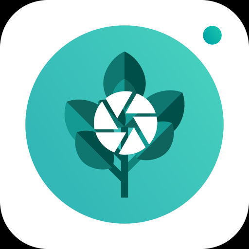 PlantFinder Quick identifier ↘️ free (With images