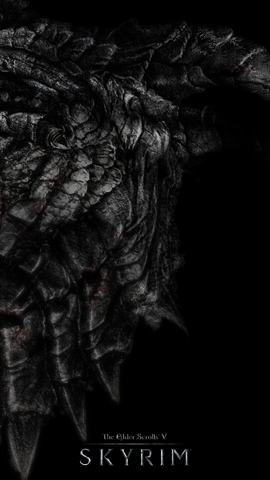 http://wallpaperformobile/18649/black-dragons-wallpaper-for