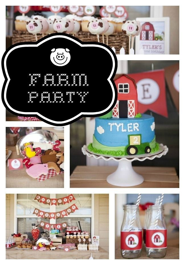 Farm Party For A 2 Year Old Boy Ideas