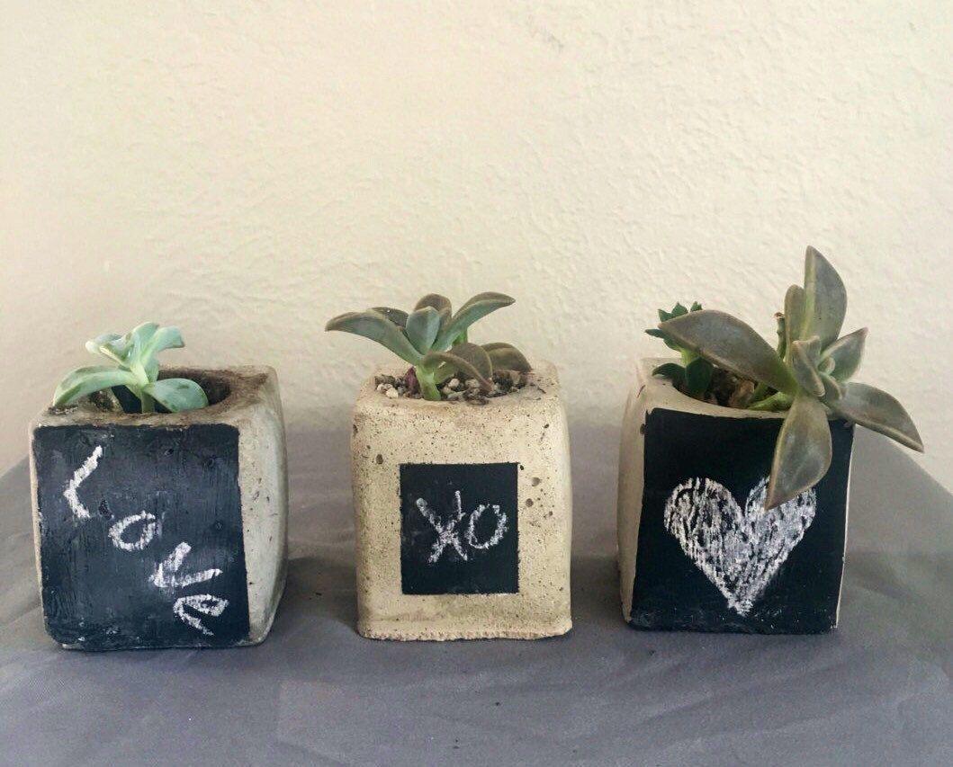 Tiny Desk Plant Succulent Gift Concrete Planters, Nautical Concrete ...