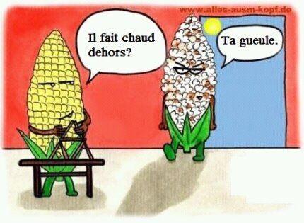 Grosse chaleur!   Dessin humoristique, Humour, Humour propre