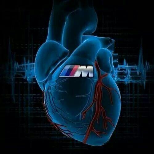 Beating Heart Full Of Power Logo Bmw Fond D Ecran Telephone Voitures Et Motos