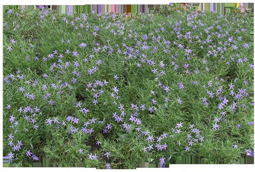 Gify Animacja Obrazki Png Zielono I Wiosennie Photoshop Landscape Plant Illustration Landscape Projects