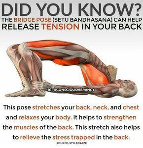 yoga bridge pose  for posture and stress release  yoga