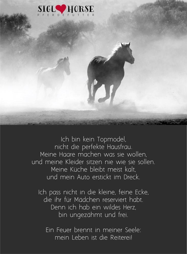 Ein Feuer brennt in meiner Seele mein Leben ist die Reitere #Mustang