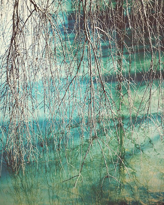 Bohemian Decor Living Room Art Nature Abstract Photography Bedroom Teal Wall Fine Photograph